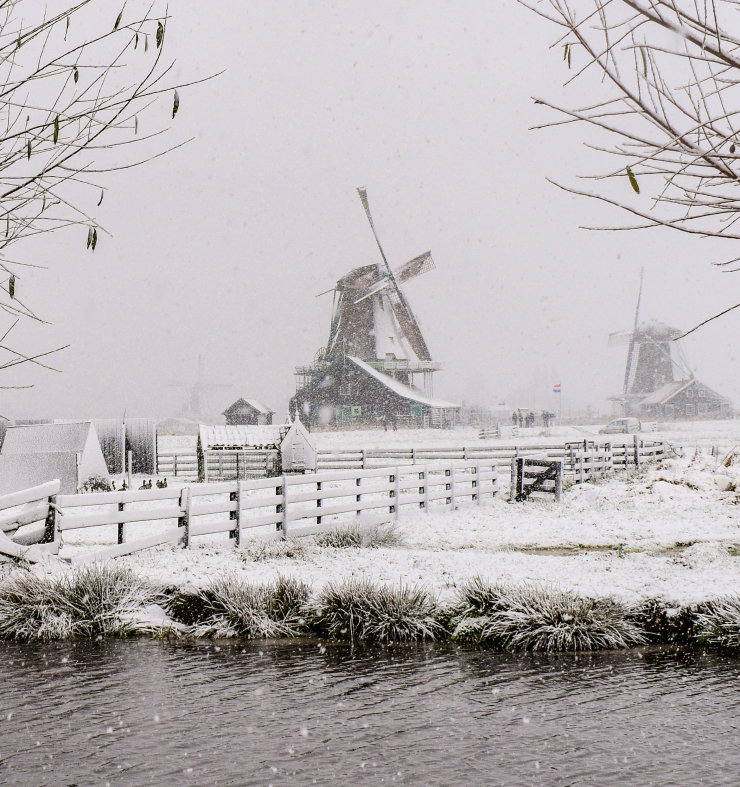 Winter landscape with windmills and snow at Zaanse Schans